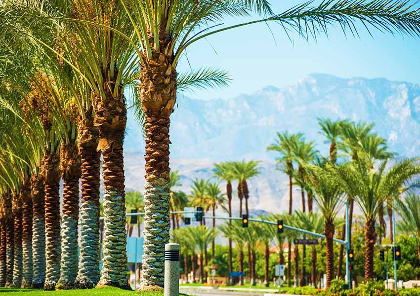 Instagrammable Palm Springs Spots