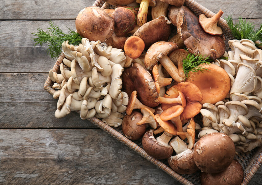 """Vegetable Types: Fungi"