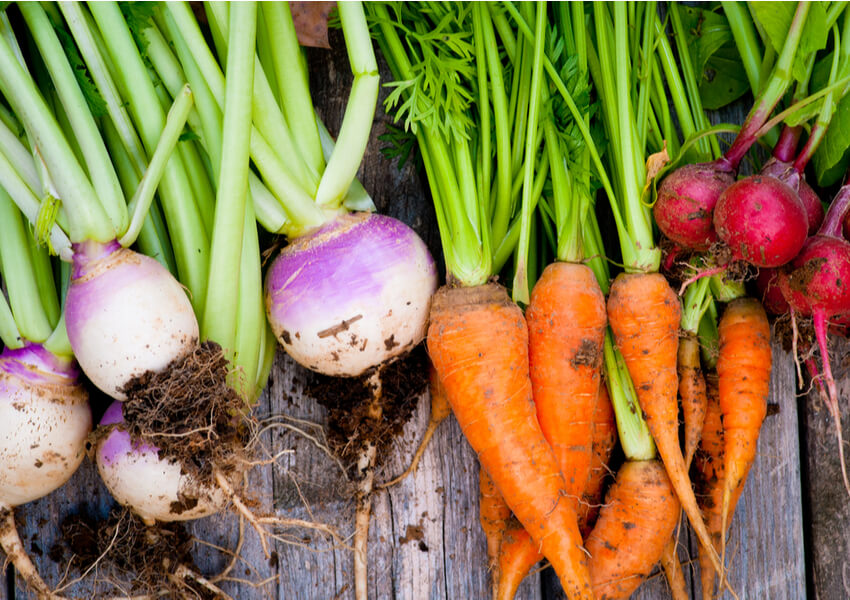 """Vegetable Types: Roots"