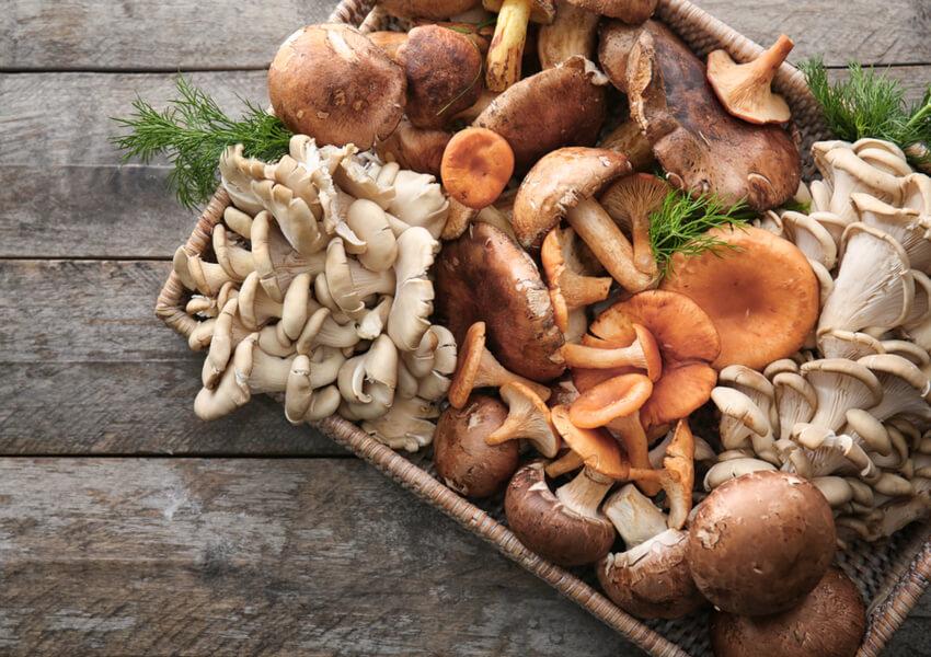 Fall Vegetables: Wild Mushrooms