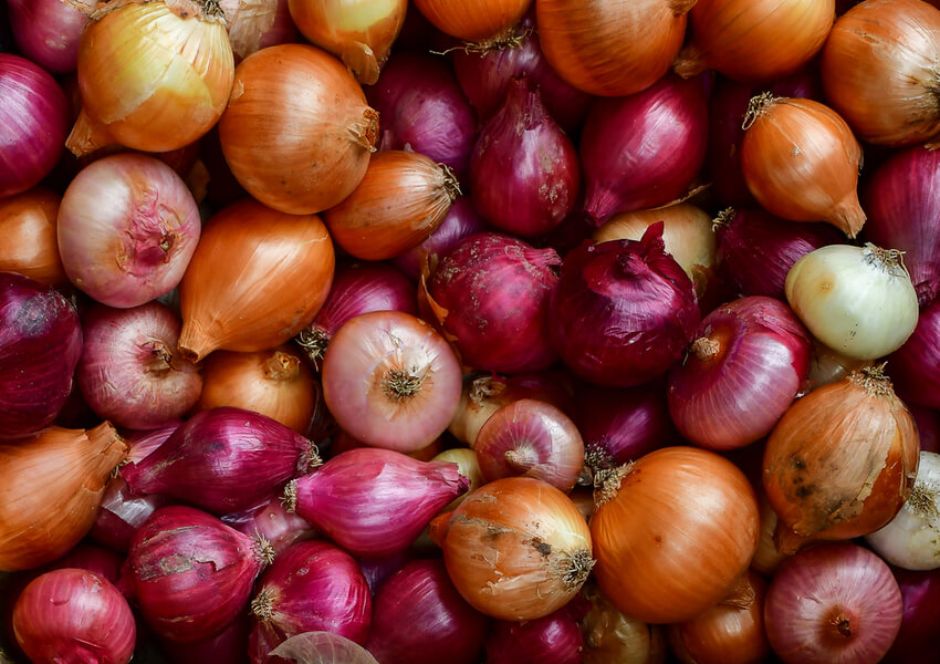 Fall Vegetables: Onions