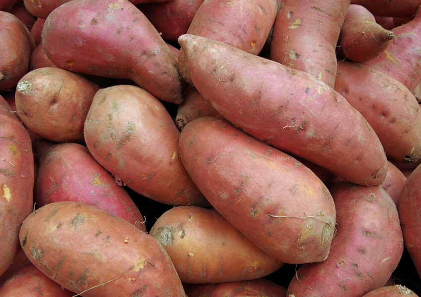 Fall Vegetables: Sweet Potatoes